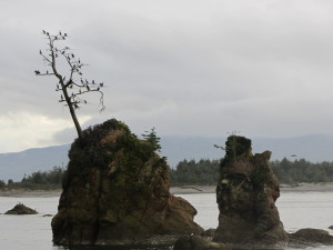Tillamook Sea Stacks