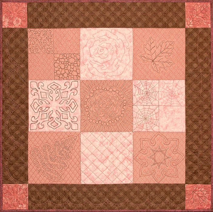 Machine Quilting 101 sampler